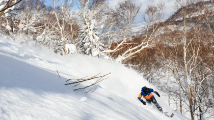 powder guide Hokkaido